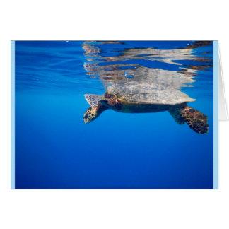 Tarjeta de felicitación; Fotos de la fauna y de la