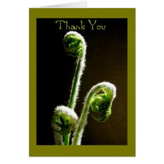Tarjeta de felicitación--Gracias