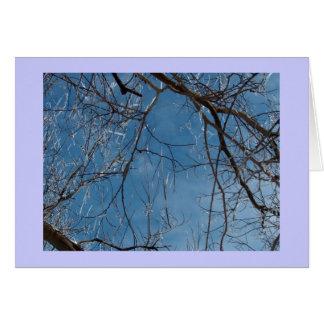 Tarjeta de felicitación/hielo del invierno