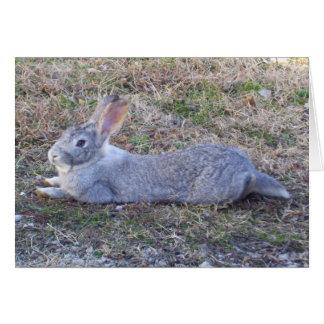 Tarjeta de felicitación perezosa del conejito