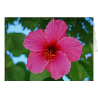 Tarjeta de felicitación rosada brillante del