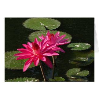 tarjeta de felicitación rosada de 2 lirios de agua