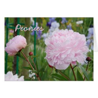 Tarjeta de felicitación rosada de los Peonies
