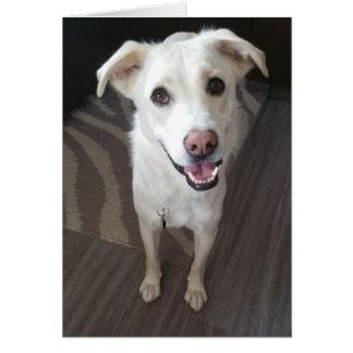 Tarjeta de felicitación sonriente del perro -