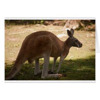 Tarjeta de felicitaciones del canguro (espacio en