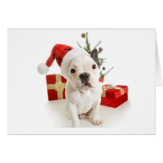 Tarjeta de felicitaciones del navidad del dogo