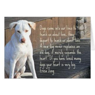 Tarjeta de la cita del perro