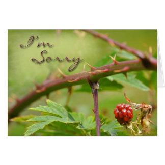 Tarjeta de la disculpa triste para ser espinoso