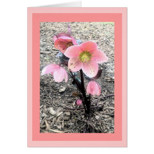 Tarjeta de la flor del melocotón