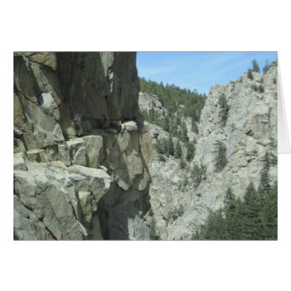 Tarjeta de la foto de la montaña de Colorado del
