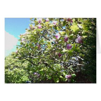 Tarjeta de la magnolia