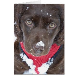 Tarjeta de la nieve del perrito del navidad