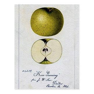 Tarjeta de la receta de Apple del vintage