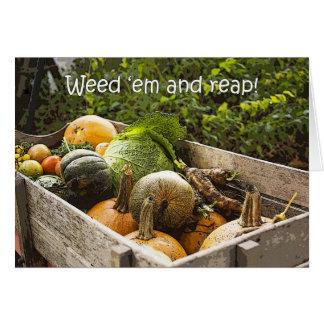 Tarjeta de las verduras del jardín