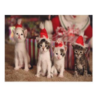 Tarjeta de Navidad 4 de los gatitos