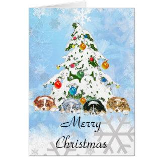 Tarjeta de Navidad australiana del ~ del pastor