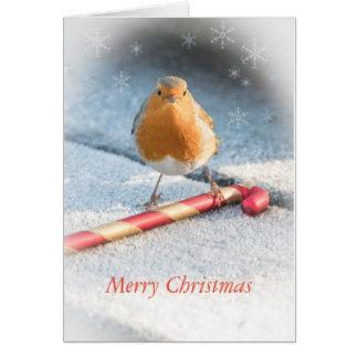 Tarjeta de Navidad con el dulce del petirrojo y