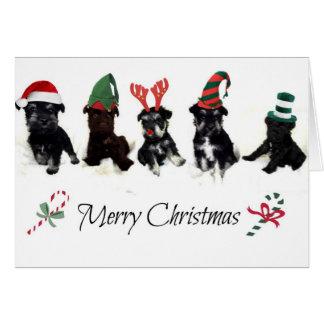 Tarjeta de Navidad con los perritos del Schnauzer