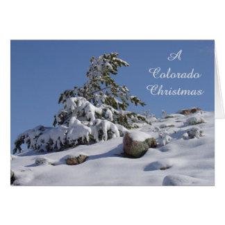Tarjeta de Navidad de Colorado del pino del