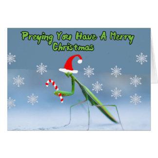 Tarjeta de Navidad de la mantis religiosa con