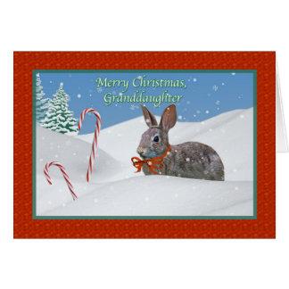 Tarjeta de Navidad de la nieta con el conejo