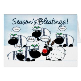 Tarjeta de Navidad de las ovejas - Bleetings de