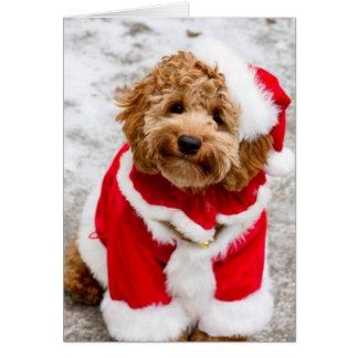 Tarjeta de Navidad de Santa Cockapoo