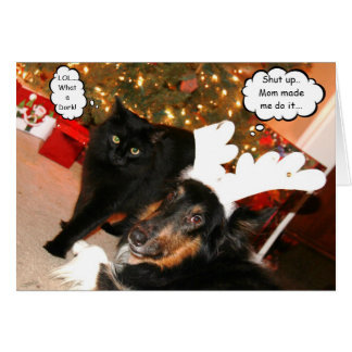 Tarjeta de Navidad del collie divertido y del gato