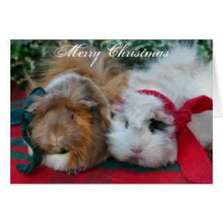 Tarjeta de Navidad del conejillo de Indias