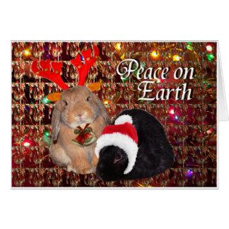 Tarjeta de Navidad del conejito 8