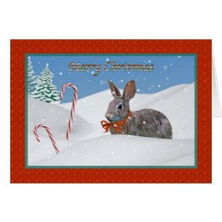 Tarjeta de Navidad del conejo de conejito y del