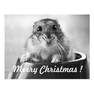 Tarjeta de Navidad del hámster Postal