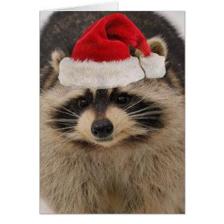 Tarjeta de Navidad del mapache Tarjeta De Felicitación