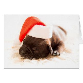 Tarjeta de Navidad del perrito del dogo