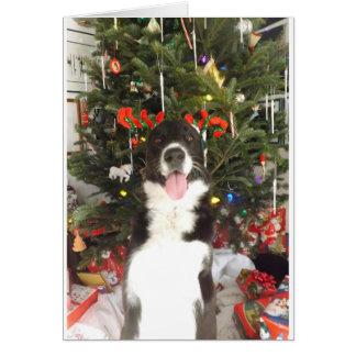 Tarjeta de Navidad del perro de las astas del reno