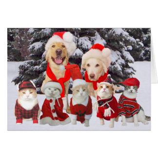 tarjeta de navidad divertida adaptable de los