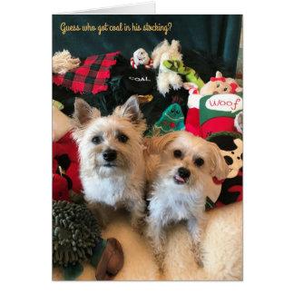 Tarjeta de Navidad divertida con los perros