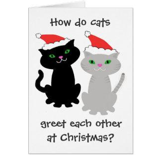 Tarjeta de Navidad divertida de los gatos