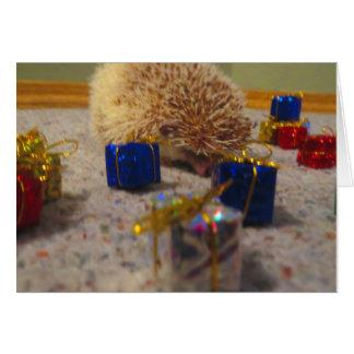 Tarjeta de Navidad divertida del erizo del