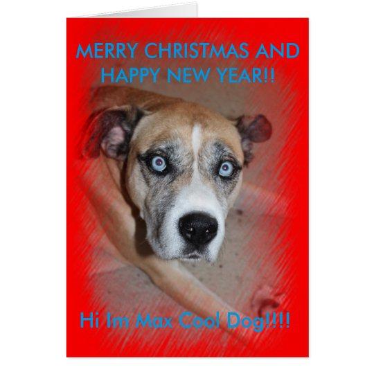 Tarjeta de Navidad máxima del perro casero