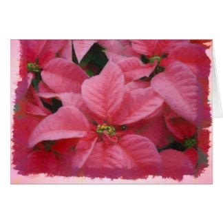Tarjeta de Navidad rosada del Poinsettia