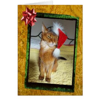 Tarjeta de Navidad traviesa del gatito