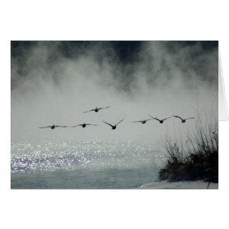 Tarjeta de niebla del vuelo de la mañana