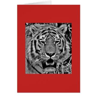 Tarjeta de nota con el tigre en fondo rojo