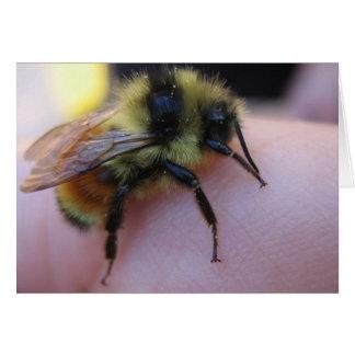Tarjeta de nota de la abeja