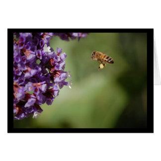Tarjeta de nota de la flor del polen de la abeja