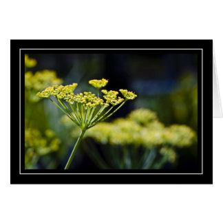 Tarjeta de nota de la foto del Wildflower