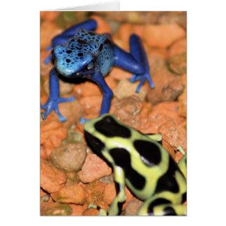 Tarjeta de nota de las ranas del dardo