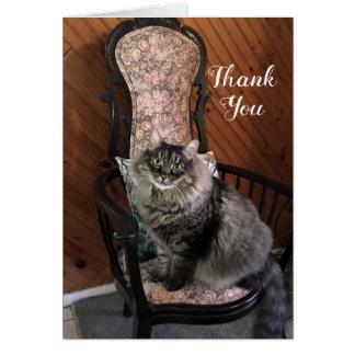 Tarjeta de nota de rey Cat Kimber Thank You