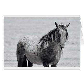 Tarjeta de nota del espacio en blanco del caballo